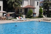 swimming pool and Shezlongs