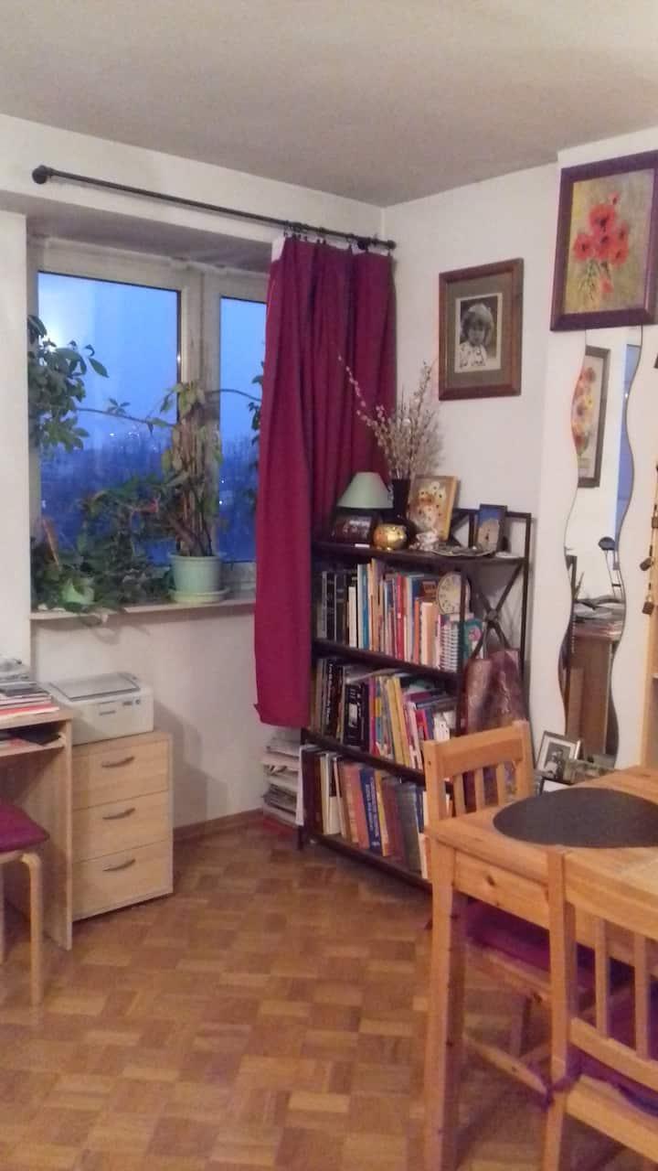 Studio lumineux à vue panoramique