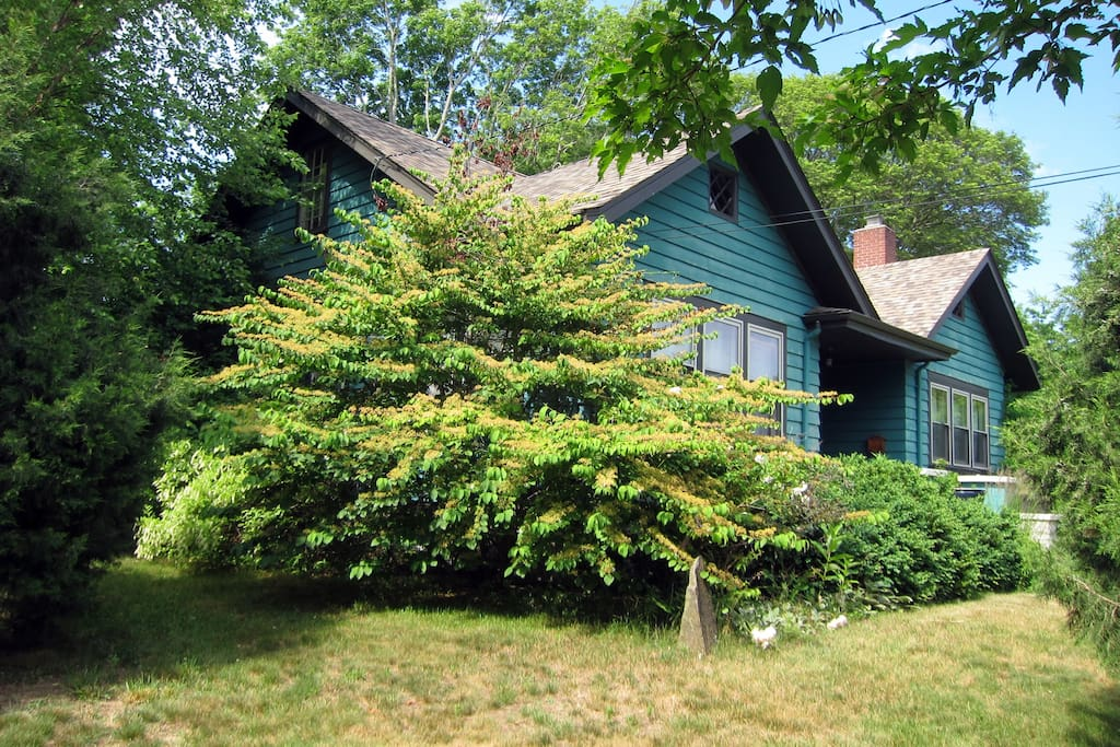Beachy bungalow home near everything houses for rent in for Rhode island bath house