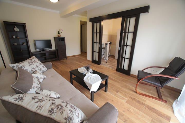 Classic New Apartament Timisoara