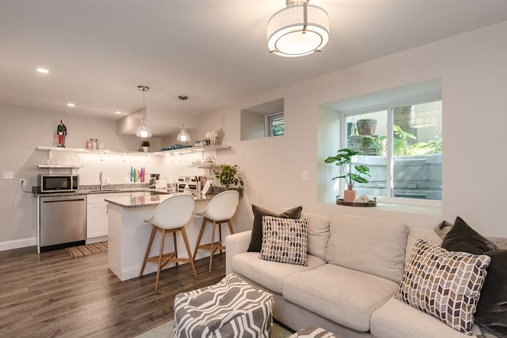 Newly renovated Brookline 1bd Apartment