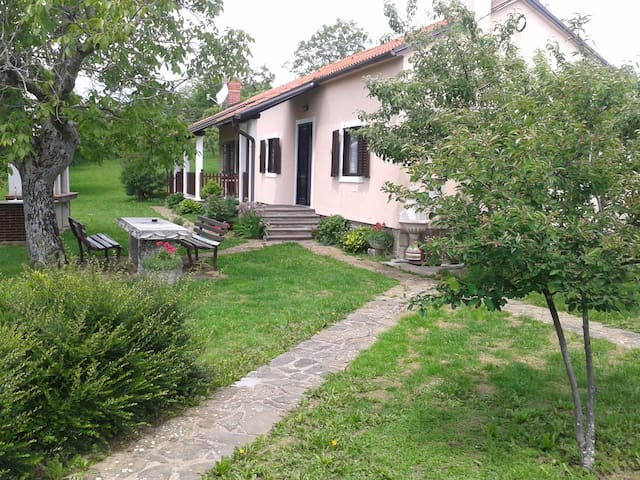 Villa Brkini-Family appartment - Pregarje - Talo