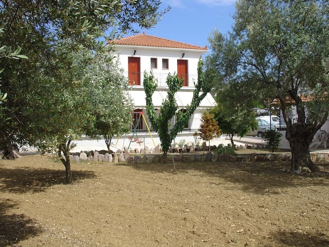 Olive Grove Guesthouse - Loutropoli Thermis - Apartment
