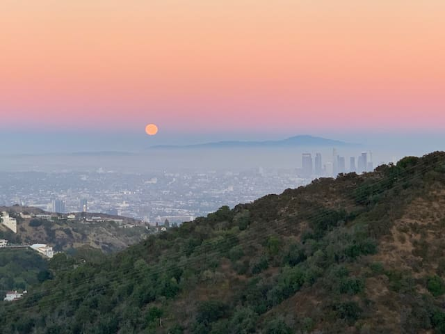 Top of Hollywood Hills!  (new listing)