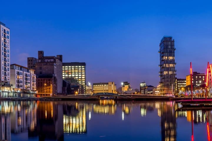 Room in Luminous Apartment Near Grand Canal Dock