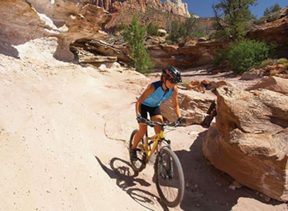Biking Trail Nearby