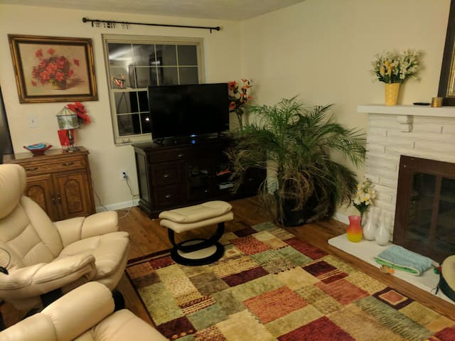 Private room and patio in Mount Lebanon - Pittsburgh - House
