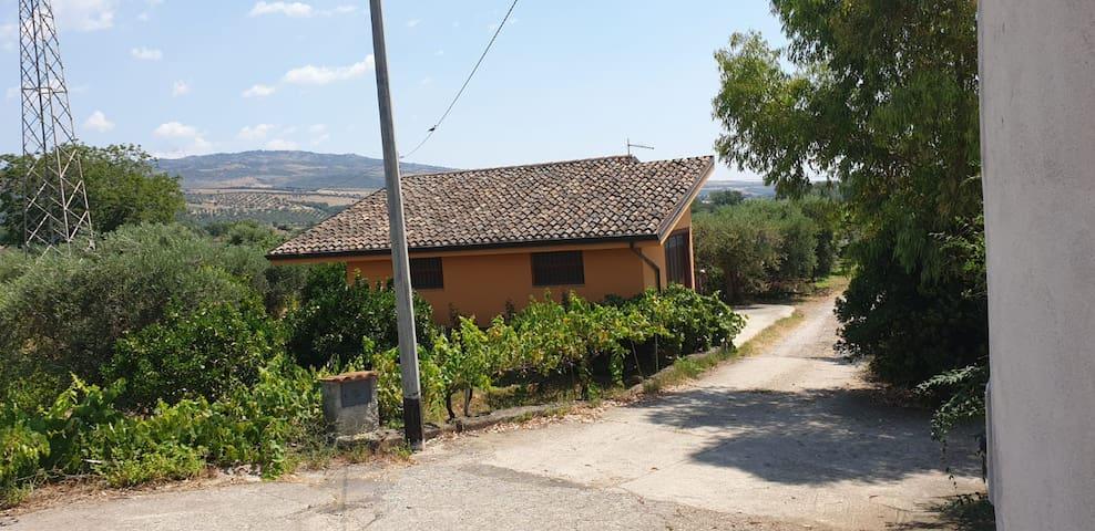 Casa Arance