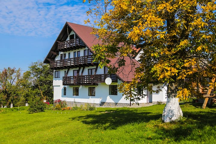 Guesthouse Octavia- Dracula's Land - Bran - Pension