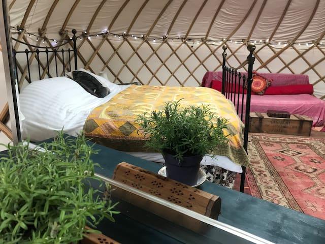 Bloomsburys Glamping Yurt