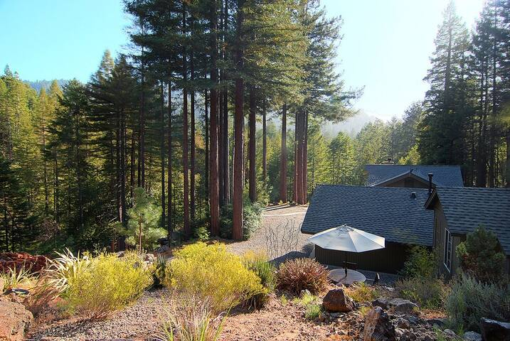 Redwoods Compound w/ Spa, Fire Pit, Outdoor Shower