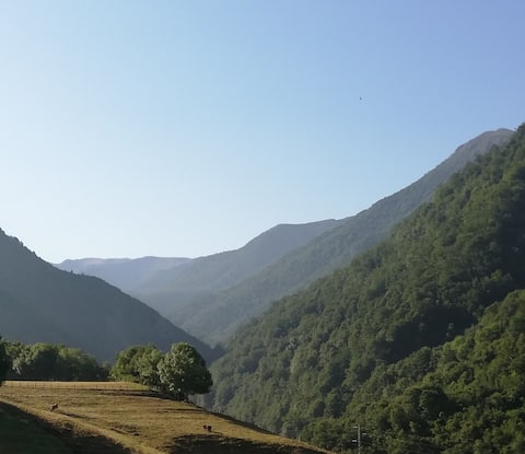 Apto. 3 hab. en el corazón del valle del Narcea
