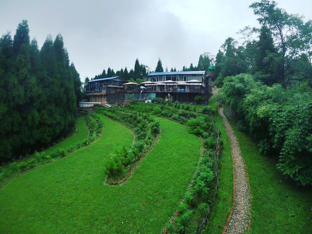 The Paradise Cottages