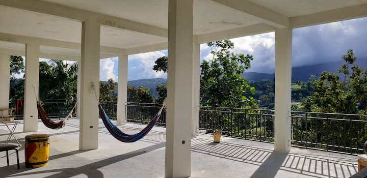Hammock Glamping in Rainforest with Amazing Views