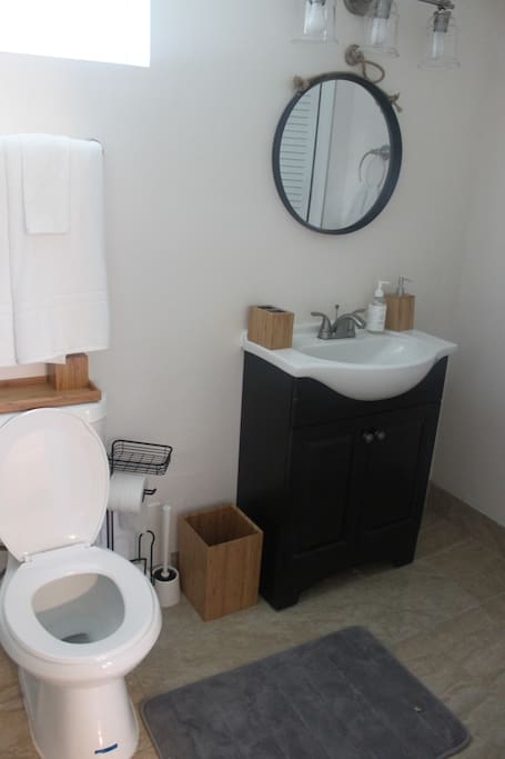 Full bath with shampoo, conditioner, body soap, hand soap and lotion provided