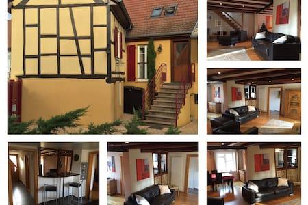 Chaleureux et spacieux appartement - Herrlisheim-près-Colmar