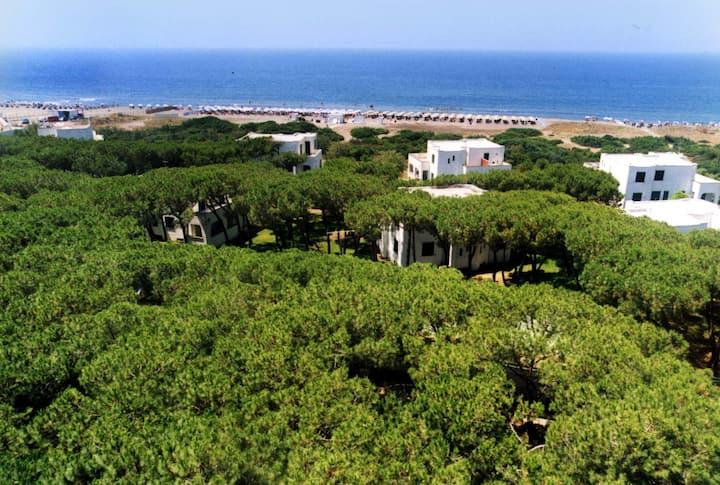 Giulivo Village - Villa a 2 piani sul mare