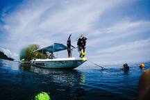 Giant Strike! Fun Diving Trip.