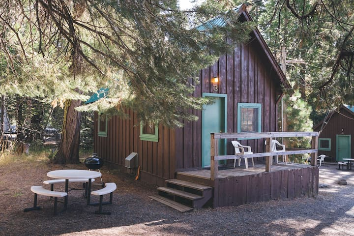 Charming Rustic Cabin near Lassen National Park