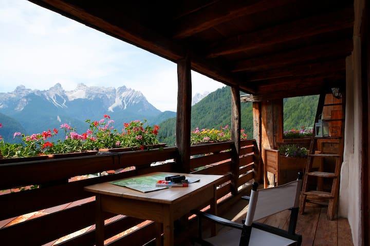 appartamento tipico in Dolomiti Paulin