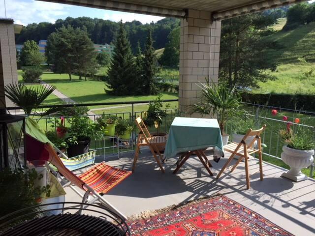 next to Zurich City - a quiet green paradise