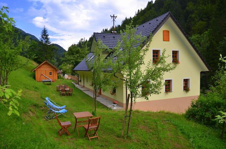 Room Planjava, Kmečka hiša Štiftar - Solčava - Bed & Breakfast
