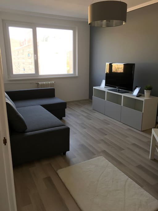 Living room with bed/Nappali kihúzható kanapéval