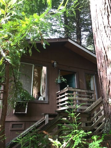 Private Cabin with Hot tub in Redwoods, Humboldt - Arcata - Cabane