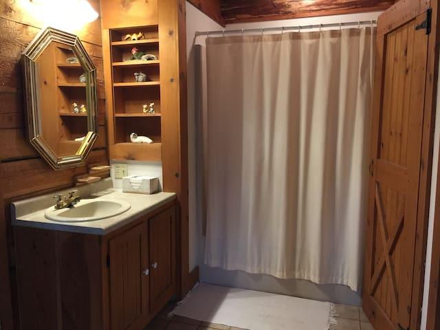 Full Bathroom in Master Bedroom!