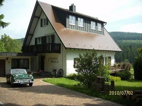 Casa Herrenwies