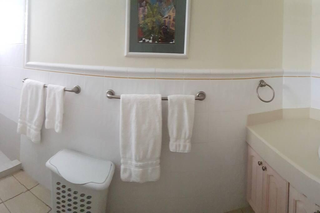 Ensuite Bathroom - Master