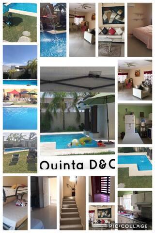 Quinta d&o