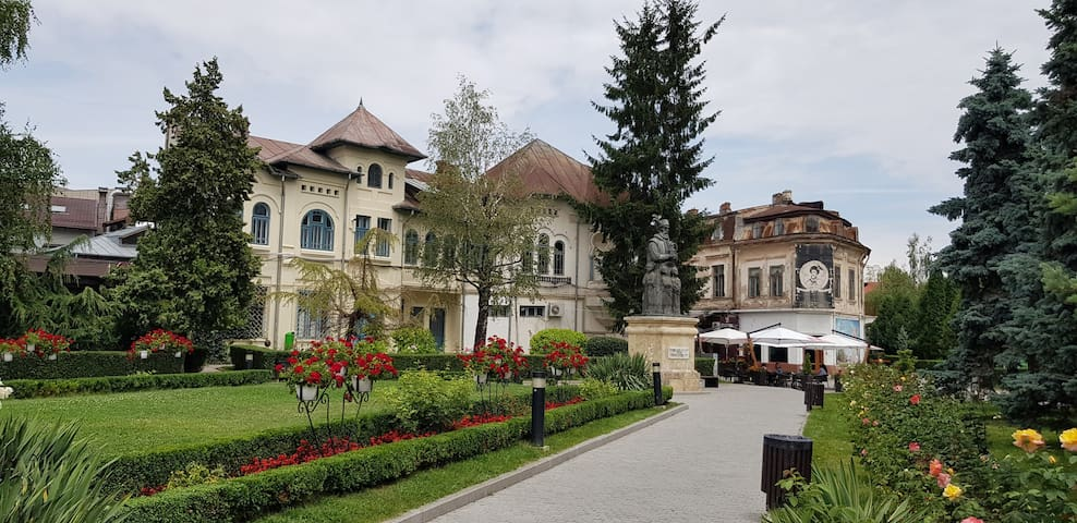 OLD TOWN APARTMENT Târgoviște