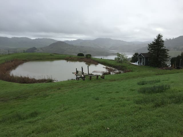 Our pond overlooks the beautiful Nicasio reservoir popular biking and hiking destination.