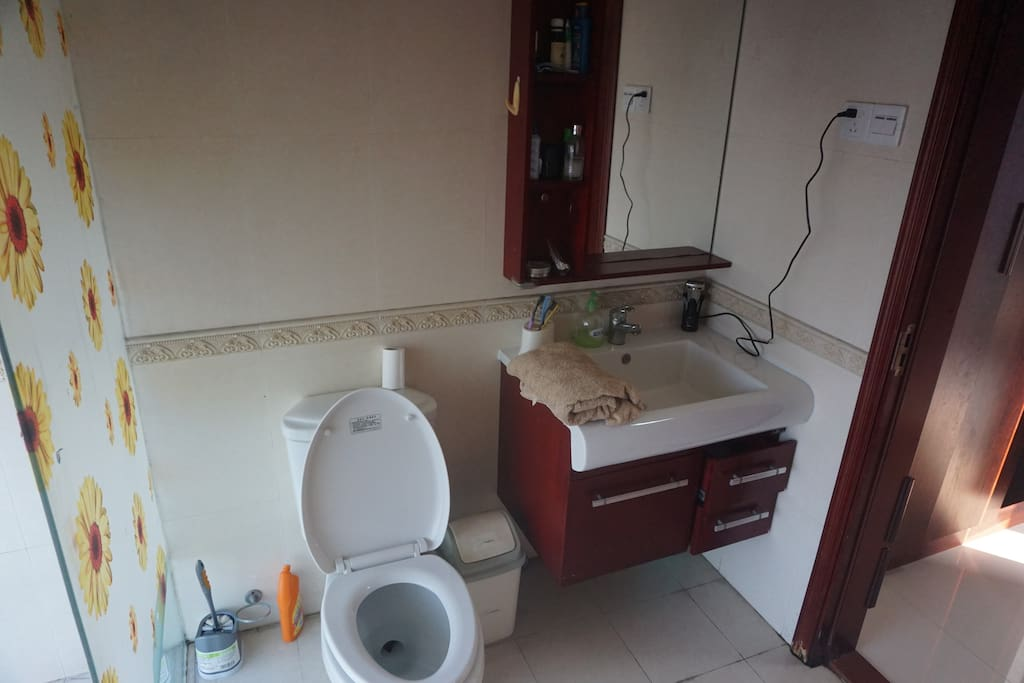 Western style toilet