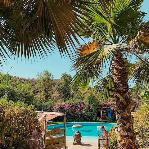 Romantic Yurt in a tropical oasis on the mountain