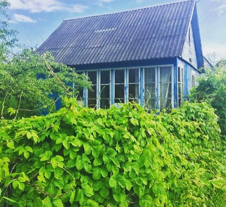 Садовый дом/garden house Kaliningrad