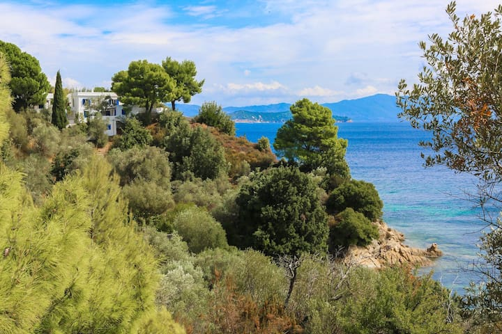 Beachfront Sea View Studio - Skiathos - Apartment