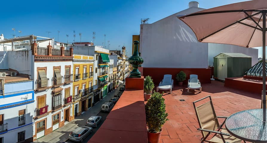 2 BEDROOMS, HUGE TERRACE, PENTHOUSE TRIANA