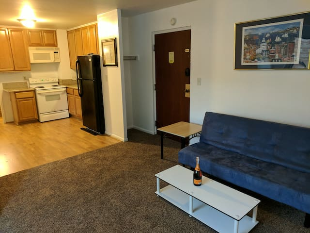 Newly Renovated Apt Right Downtown!