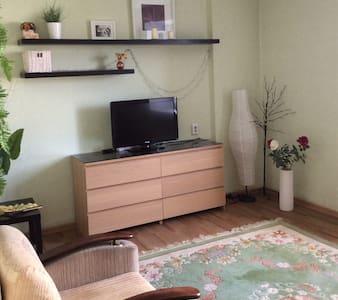 Однокомнатная квартира на Ленинградской