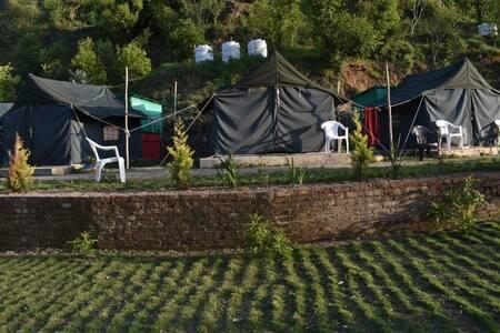 Camping in Nainital.