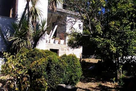 Casa da Seara Oliveira de Frades - Oliveira de Frades