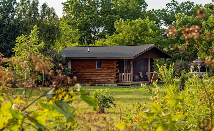 Secluded cabin in wine country - Pet friendly w/ hot tub & breakfast delivery!