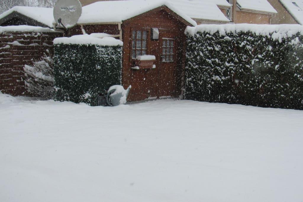 jardin arrière en hiver