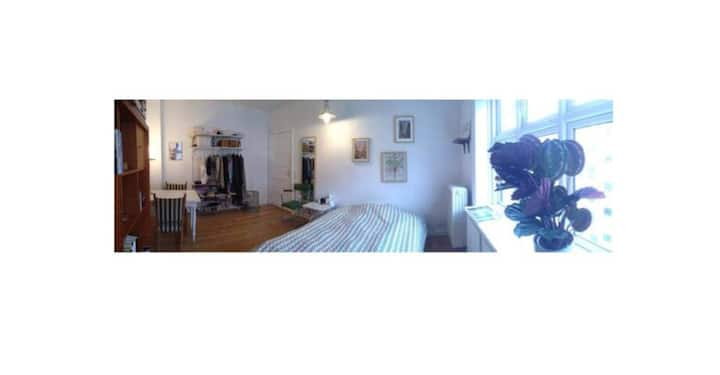 Lovely, quiet room near the city center