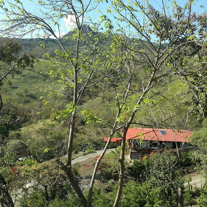 View of the huouse from the walking trails to the view point of the property.