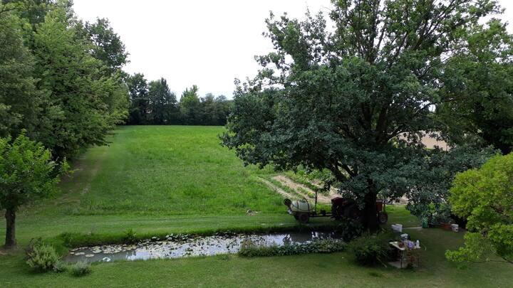Casa in campagna a Treviso