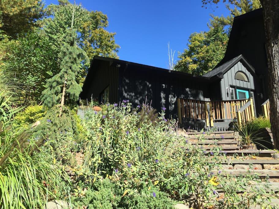 Steps to the front door, September garden.