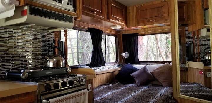 Maizie the Retro Moho! (Motorhome)